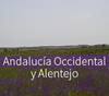 Andalucía Occidental y Alentejo: dos transiciones políticas a escala local